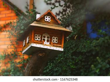 house for birds near the house