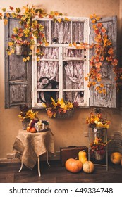 House decorated for Halloween holiday. Shot made in photo studio. Image toned