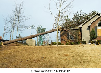 house with a fallen pine tree on its roof after a tornado went through this southern USA neighborhood in Columbus GA in March.