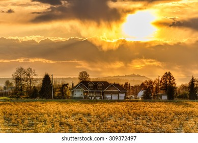 The house and field are lit by the large golden sun.