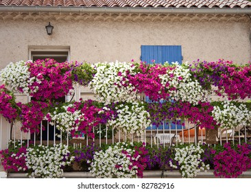House with flower in provence, France