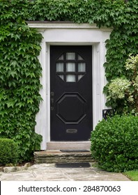 house front door surrounded by ivy