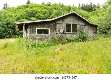 A house in a grass field has long been abandoned