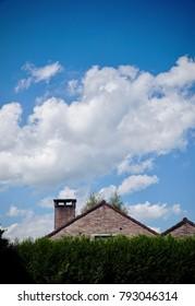 House hidden behind hedge under a blue summer sky