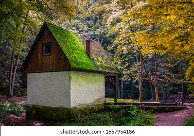 """House for hunters with gorgeous moss on it in the deep forest. With autumn vibe on the foliage of the trees. This house is built in Jósvafő, Hungary - inside of the so called """"Aggtelek"""" National park."""