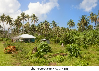 House and hut lost in a luxuriant nature in Upolu, Samoa