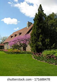 House with landscape in full bloom in spring