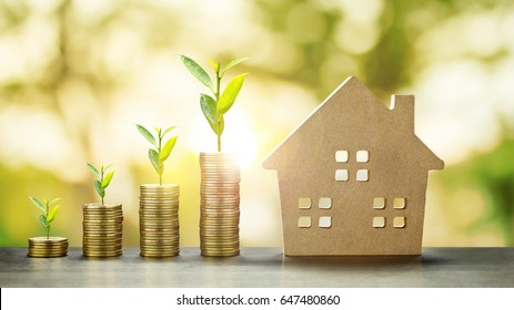 House Model and Golden Coins Stacks and Plant Growing with blur Background.Savings Plans for Housing,Finance and Banking about House concept.