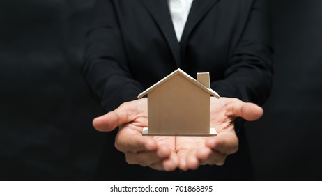 house model and growing plant on row of coin money for finance , banking , money , saving concept