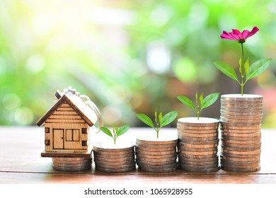 house model on saving coin growth up to profit interest for concept investment mortgage finance and home loan