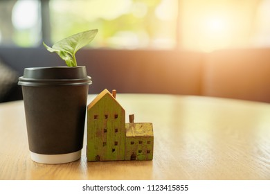 house model and plant cup put together on the table and have the orange light from the window. The coexistence of the house with wooden aunt. An image of a recycled cup with plants