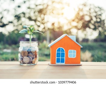 House model and plant growing in savings Coins on table for finance and banking concept.