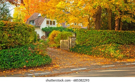 House with nice garden in autumn