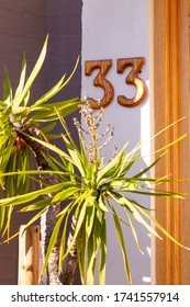 House number 33 made out of wood hidden behind plants