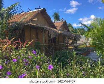 House nuture asia beauty garden