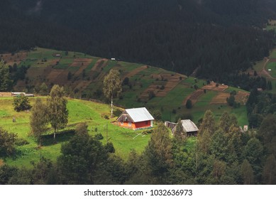 A house on a green meadow in the Carpathian mountains. Small house near old forest. Lifestyle in the Carpathian village.