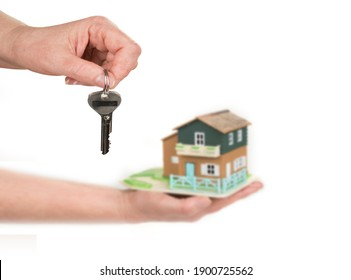 House on a hand on a white background