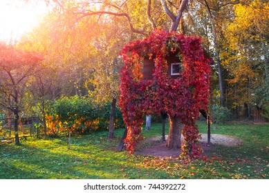 A house on a tree overgrown with red vine in an autumn garden in sunset time