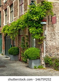House with plants in Bruges, Belgium