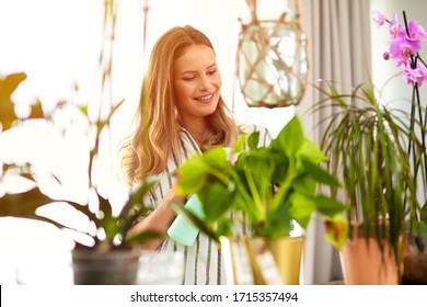 house plants need attention, young woman spraying water on the plants that are inside the house