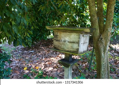 The house for raising bees in the orchard.