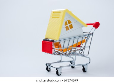House in shopping cart on a white background.