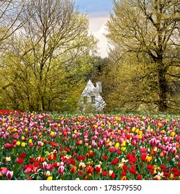 House of spring flowers and trees. Spring landscape.