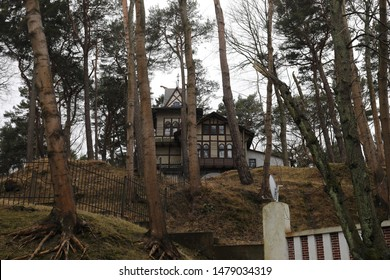 House standing in the forest