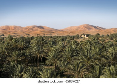 House surrounded by palm trees, situated in an oasis on the border with large sand dunes of the Sahara desert - Best of Morocco.