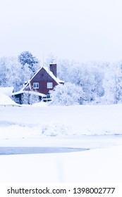 A house surrounded by white trees