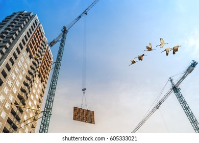 A house under construction near a construction crane and cranes fly in the sky