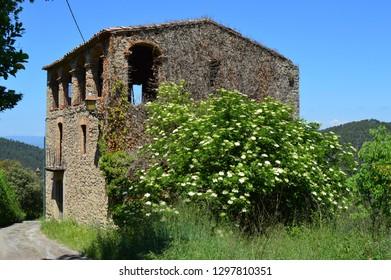 House in village ruin