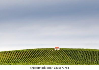House in Vineyard