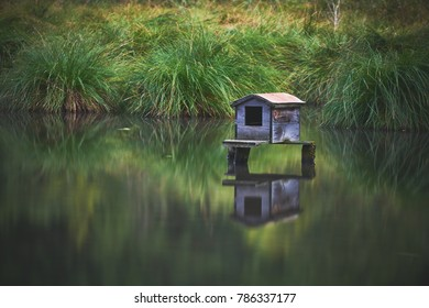 House for water birds