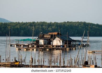 A houseboat was floating on the bay in front of mangrove forest at Phang-nga bay,Thailand.