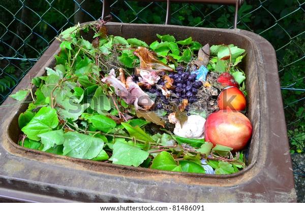 Household bio organic food waste in rubbish bin ready for recycling