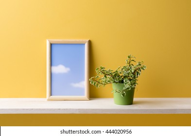 houseplant on the shelf and a yellow background