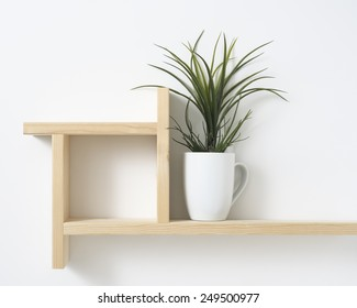 houseplant on wooden shelf