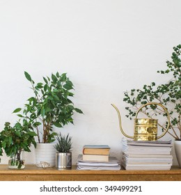 Houseplants, books, pile of journals and watering can arranged on the wooden shelf
