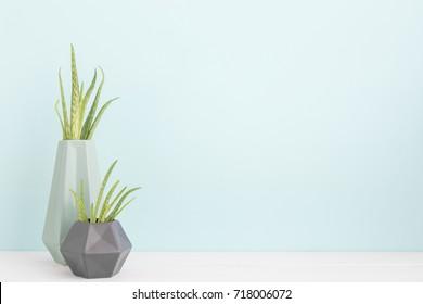 Houseplants in ceramic pots on a shelf.