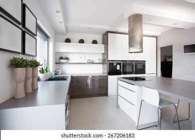 Houseplants in exclusive kitchen in modern style