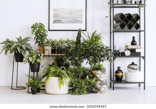 Kamerplanten op de vloer en tafel staan naast een metalen plank met decoraties in het interieur van de woonkamer