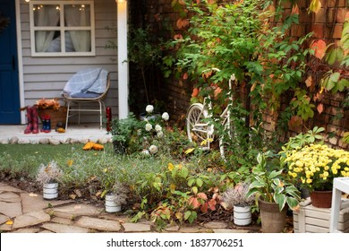 Houseplants in pots in courtyard. Cozy garden corner. The interior Patio of wooden house with green plants in pots. house terrace in autumn decor. Soft focus on the grass, foreground.