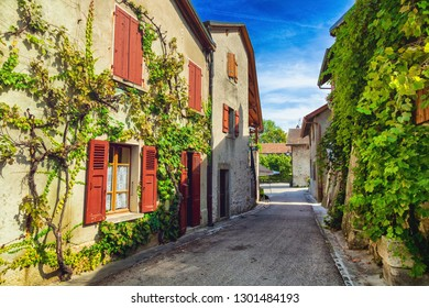 Houses covered in Ivy in medieval french town Yvoire