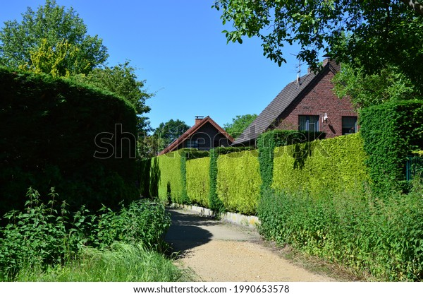 houses-green-area-footpath-600w-19906535