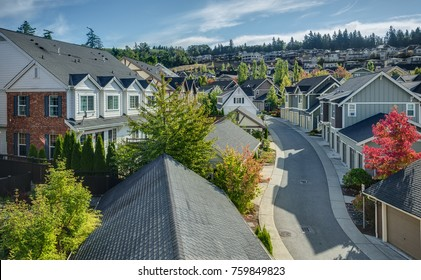 Houses line a Curvy Road that cuts through Residential Neighboorhoods in the Issaquah Highlands on an Autumn Morning