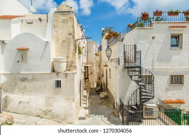 Houses in the old town of Vieste