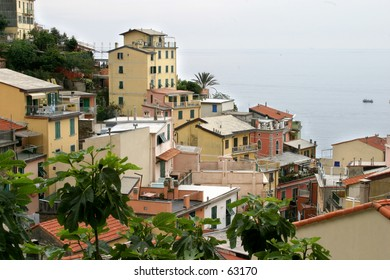 houses on the hill in cinque terre