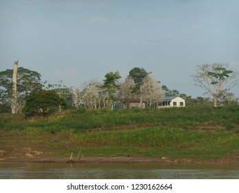 Houses on river coast, close to trees