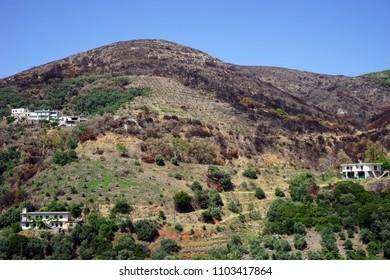 Houses on the slope of mount